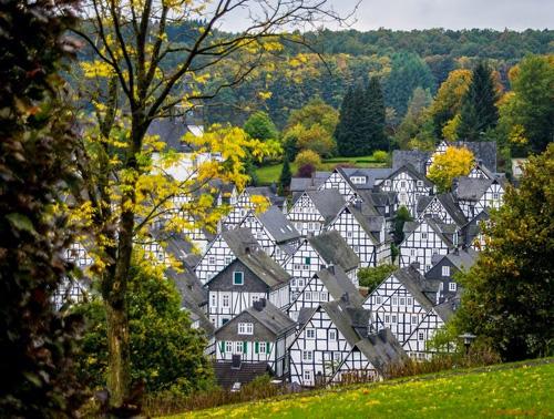 Phần cổ nhất và góp phần giúp Freudenberg nổi tiếng chính là khu Alter Flecken. Tại đây có hơn 50 ngôi nhà mọc san sát nhau và giống nhau như lột.