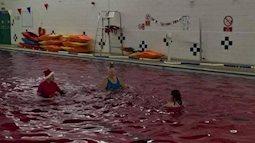 Đúng dịp Giáng sinh, nước hồ bơi bất ngờ chuyển màu đỏ như trong phim kinh dị