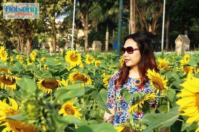 Giới trẻ Hà thành tự sướng bên vườn hoa hướng dương5