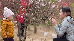 Mẹ và bé rộn ràng pose hình giữa vườn đào Tết