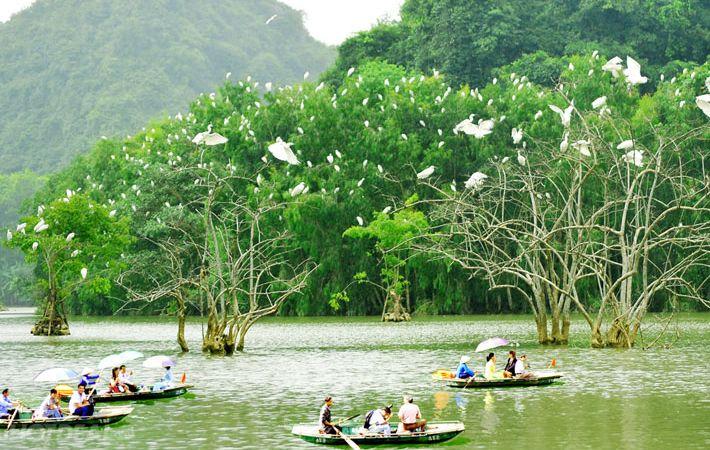 Thung Nham là nơi bạn có thể ngắm được nhiều loại chim quý