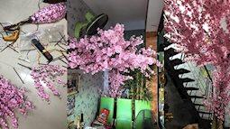 Ngưỡng mộ đôi vợ chồng ở Sài Gòn: Tự làm hoa đào giấy đẹp như thật đón Tết