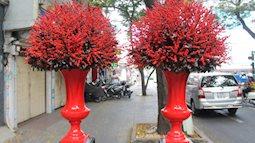 Những bình hoa Tết đắt ngang xe máy xịn