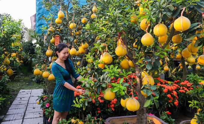 Bưởi Diễn 50 triệu đồng một cây bán trên vỉa hè Sài Gòn