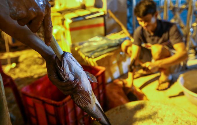 Trắng đêm nướng cá lóc vía Thần Tài trên vỉa hè Sài Gòn