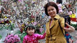 Mẹ và bé rủ nhau đi ngắm hoa anh đào tại Hà Nội