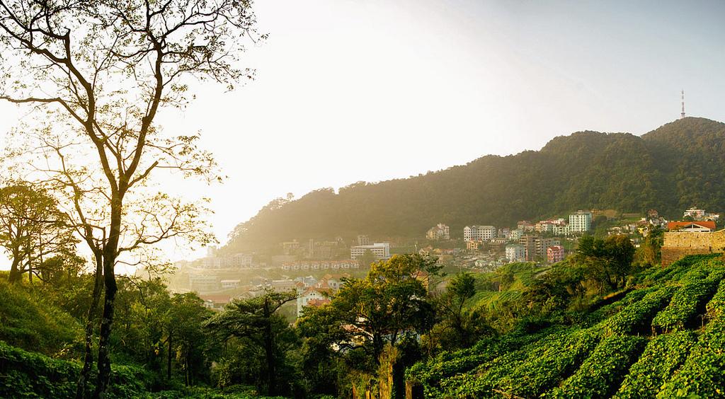 Cảnh đẹp thơ mộng hùng vĩ nơi Tam Đảo