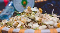 Hà Nội nồng nàn trong hương hoa bưởi tháng 3