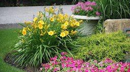 Bí kíp giúp khu vườn có hoa nở quanh năm. Điều mà những người thợ làm vườn luôn giấu nhẹm