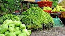 Những loại rau đặc sản Sa Pa ăn một lần là nhớ mãi