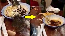 Đang ăn trong nhà hàng, du khách hốt hoảng khi cá bất ngờ nhảy khỏi đĩa!
