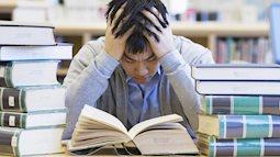 Cách tăng cường trí não cho sĩ tử trong mùa thi tuyển sinh vào 10