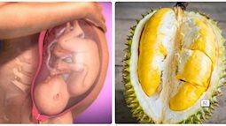 Khoa học chứng minh: Mẹ bầu ăn sầu riêng vào mùa giúp phòng ngừa dị tật thai nhi
