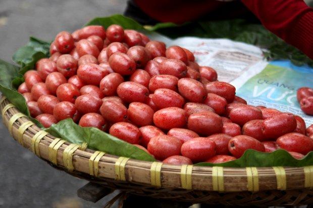 Những trái nhót căng tràn, có màu đỏ rất đẹp mắt.