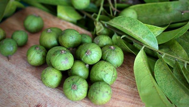 Những trái sấu xanh như màu ngọc.