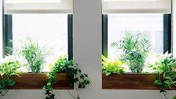 Phòng tuy đơn giản vẫn lung linh khi trang trí cửa sổ với 7 ý tưởng độc lạ này