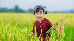 Nhóc tỳ hóa bác nông dân lom khom ra đồng khiến dân tình ôm tim đổ rạp