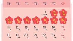 Bộ Lao động trình Chính phủ lịch nghỉ Tết Âm lịch 9 ngày