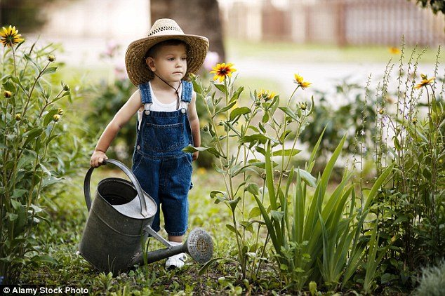 Cách chăm sóc và tưới vườn cây nhà bạn vượt qua những ngày nắng nóng, bạn đã biết chưa?