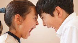 Cách hòa giải xung đột giữa anh chị em ruột của trẻ nhỏ