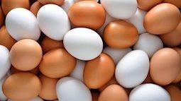 Ăn một quả trứng mỗi ngày làm giảm nguy cơ mắc bệnh tim