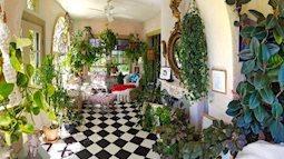 Trồng một khu vườn trong nhà: Có phải ý tưởng điên rồ?