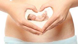 Thai nhi tuần thứ 6: Những thay đổi cực lớn và đặc biệt quan trọng của mẹ bầu