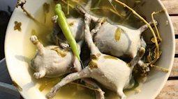 Món ếch òn nguyên con - đặc sản độc lạ của Ninh Thuận