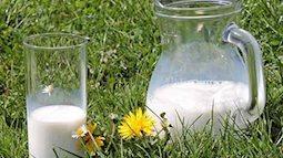 Sữa hết hạn, đừng vội vứt đi, hãy tận dụng làm những điều hữu ích dưới đây