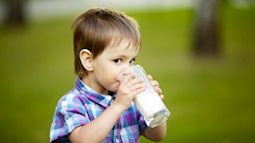 Truy tìm nguyên nhân con bị đau bụng sau khi uống sữa bò