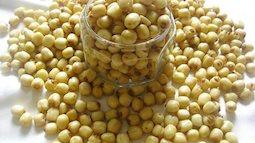 Làm hạt sen sấy khô bằng máy sấy để dành cho cả nhà ăn dần, vừa ngon vừa bổ