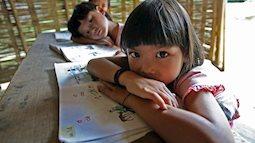 Bộ Giáo dục thành lập đoàn kiểm tra để làm rõ những phản ánh về việc in và phát hành sách giáo khoa