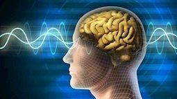 Bí quyết cực kỳ hữu ích giúp  bạn tăng cường trí nhớ