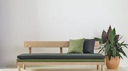 5 mẫu nội thất độc đáo có lợi cho sức khỏe đón đầu xu hướng mới