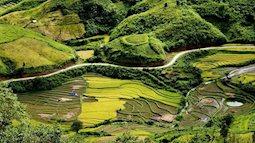 Đến Lai Châu đừng quên trải nghiệm vẻ đẹp hoang sơ mà kỳ vĩ của Sìn Hồ