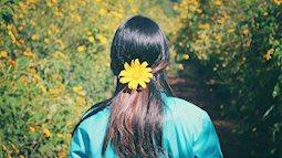 Đừng để lỡ những mùa hoa tuyệt đẹp này vào tháng 10 bạn nhé