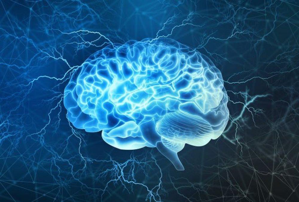 Tạo ra bộ não 3D từ các tế bào thần kinh của con người, niềm hy vọng lớn cho người suy giảm trí nhớ