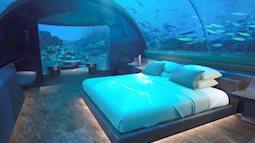 Tin được không, khách sạn dưới lòng đại dương, ngủ cùng cá mập giá 1 tỷ / đêm