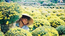 Mê mẩn vẻ đẹp của làng hoa Sa Đéc từ trên cao