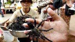 Nguồn dinh dưỡng khổng lồ từ côn trùng không phải ai cũng biết