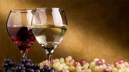 Bất ngờ khi biết uống rượu chừng mực lại giúp con người kéo dài tuổi thọ
