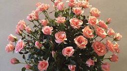 Cách đơn giản để cắm lọ hoa hồng sang trọng ngày Tết