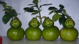 Đã mắt chiêm ngưỡng những loại trái giá tiền triệu phục vụ Tết nguyên đán