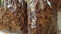 Cẩn trọng khi mua măng khô ăn Tết