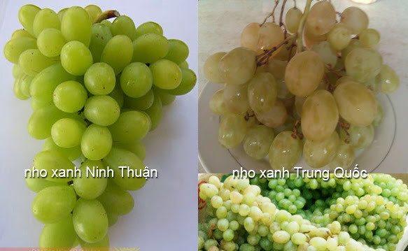 Phân biệt nho Ninh Thuận và nho Trung Quốc không khó