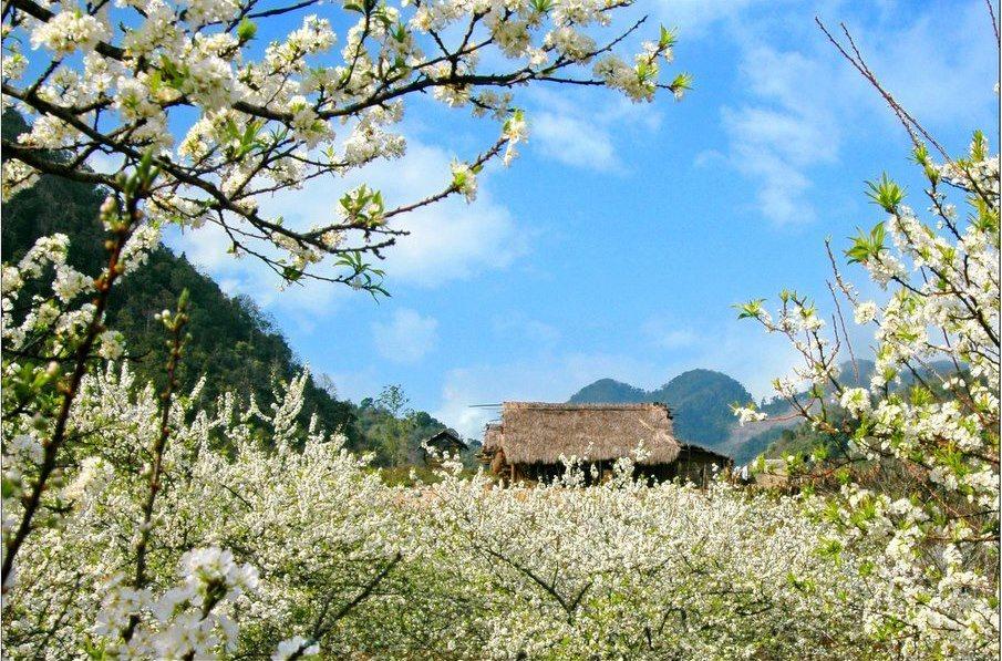 Độc đáo phong tục đón tết của người Thái ở Lai Châu
