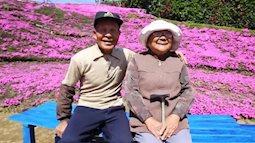 Xúc động người chồng nông dân cặm cụi trồng cả đồi hoa màu tím tặng vợ mù lòa