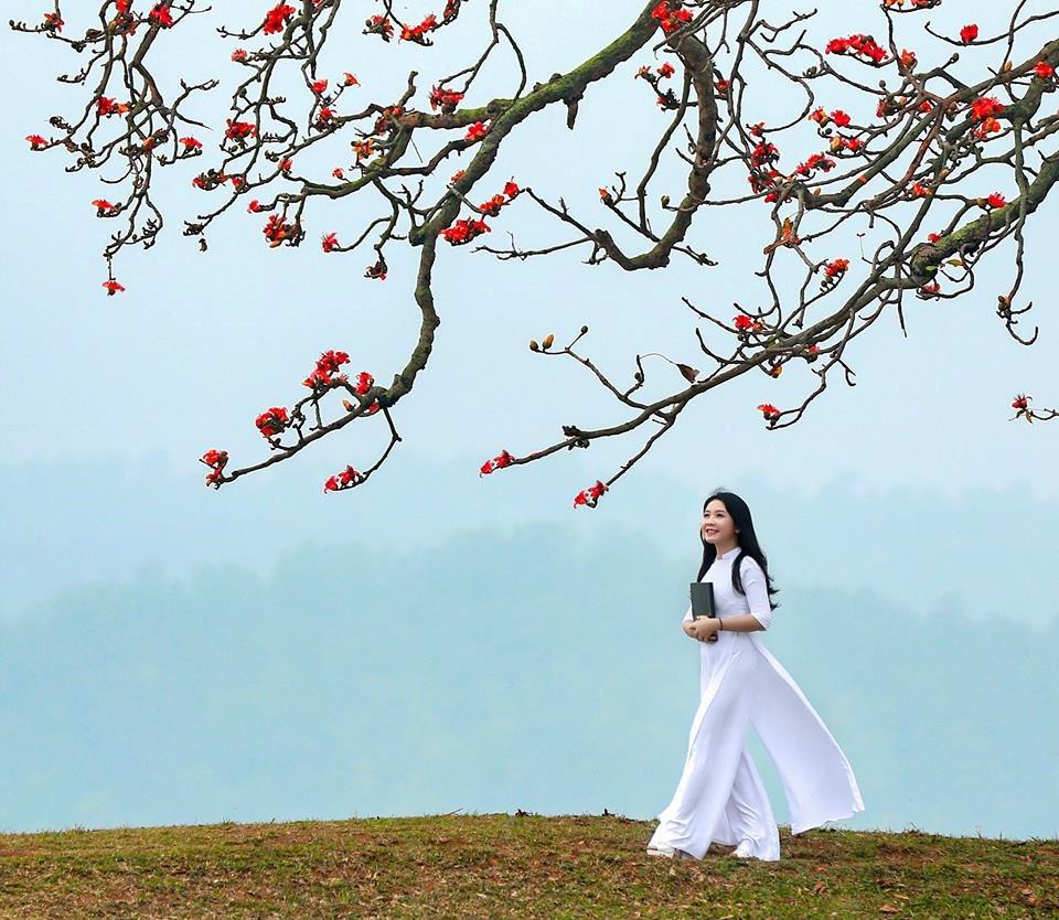 Chuyện về Hà Nội và những loài hoa báo hiệu tháng 3 đã về