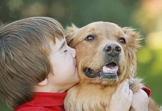 4 loại bệnh nguy hiểm chó cưng có thể truyền sang người