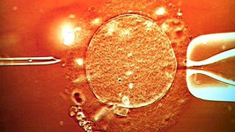 Bé trai đầu tiên trên thế giới mang 3 loại gene trong người đã ra đời
